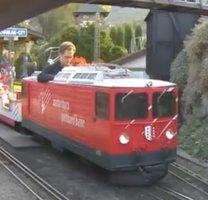 Swiss Vapeur parc railway webcam