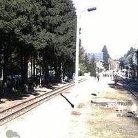 Bahnhof Drei Annen Hohne Station